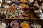 Pengobatan Herbal Diyakini Bisa Hemat Anggaran Pemerintah Puluhan Triliun