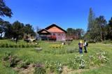 Guest House Jampit, Bangunan Kuno Peninggalan Kolonial di Kaki Gunung Ijen