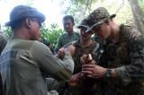 Makan Hewan Buas dan Tanaman, Begini Cara Marinir Indonesia dan Amerika Bertahan Hidup di Hutan
