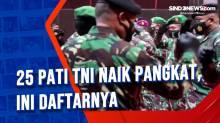 25 Pati TNI Naik Pangkat, Ini Daftarnya