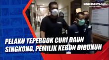 Pelaku Tepergok Curi Daun Singkong, Pemilik Kebun Dibunuh