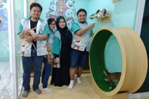 Anabul Pet Center, One Stop Shop Khusus Cat Lovers di Depok