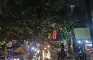 Pohon Tumbang, Jalan Akses Bekasi Utara Terputus