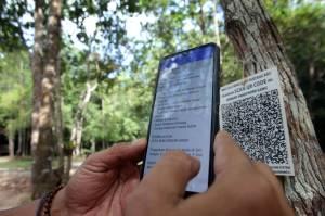 Menjelajah Hutan Masa Kini di Bukit Peramun