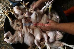 Kenaikan Harga Ayam Potong Jelang Lebaran