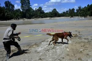 Polisi Kerahkan Anjing Pelacak Bantu Cari Korban Banjir Bandang di Luwu Utara