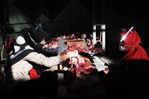 Warga Bulusan Semarang Terapkan Protokol Kesehatan Saat Potong Daging Kurban