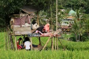 Siswa di Pelosok Enrekang Kesulitan Akses Internet