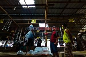 Melihat Aktivitas Pasar Ikan Terbesar di Parung Bogor