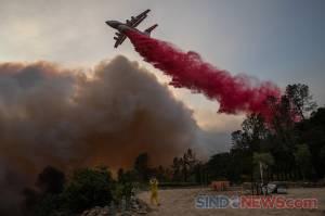 Kebakaran Hebat Kembali Berkobar di California, Hanguskan 1.200 Hektare Lahan