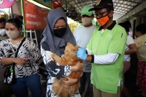 Program Vaksin Rabies Gratis di Jakarta Ramai Peminat