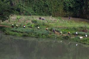 Berwisata Sepeda ke Danau Cisawang Bogor