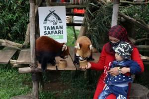 Taman Safari Bogor Batasi Jumlah Pengunjung