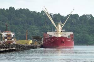 ABK Kapal Pengangkut Gula dari India Positif Covid-19