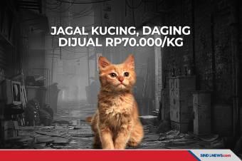 Viral Jagal Kucing di Medan, Daging Dijual Rp70.000/Kg