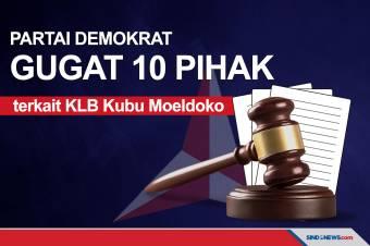 10 Pihak terkait KLB Kubu Moeldoko Digugat Partai Demokrat