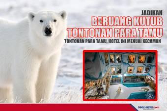 Jadikan Beruang Kutub Tontonan Tamu, Hotel Ini Menuai Kecaman