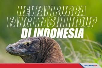Hewan Purba yang Masih Hidup di Indonesia