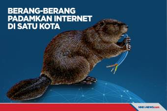 Berang-berang Kanada Padamkan Internet di Satu Kota