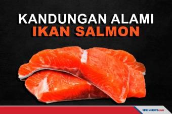 Bermacam Kebaikan dari Ikan Salmon untuk Kesehatan Kita
