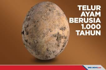 Masih Utuh, Telur Ayam Berusia 1.000 Tahun Ditemukan di Israel