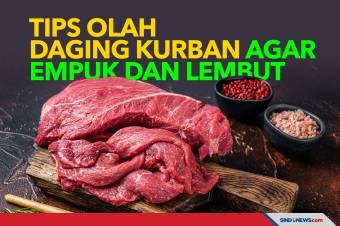 Tips Olah Daging Kurban Idul Adha Agar Empuk Dan Lembut