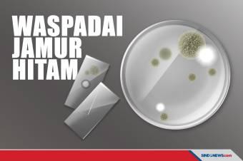 Menginfeksi Ribuan Orang, Ini Bahaya Jamur Hitam yang Mematikan!