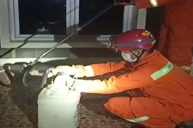 Damkar DKI Evakuasi Ular Kobra 1 Meter dari Rumah Warga di Jakarta Selatan