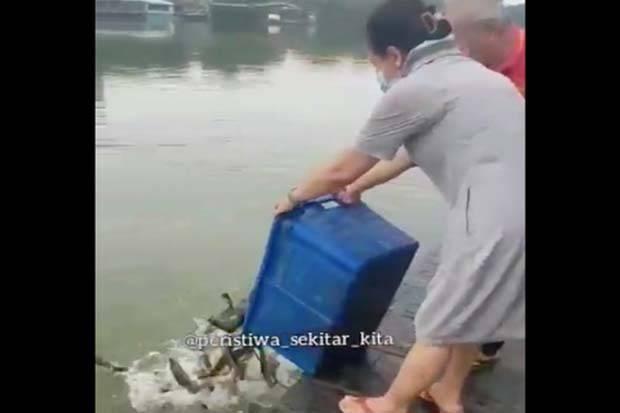 Viral Warga Lepas Ribuan Lele di Danau Sunter, Warganet: Untuk Buang Sial