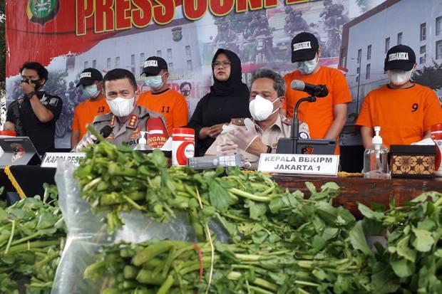 Ciduk 4 Pelaku, Polisi Gagalkan Penyelundupan Benih Lobster Senilai Rp7 Miliar ke Singapura