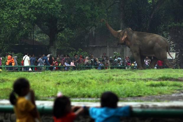 Libur Lebaran, Kapasitas Tempat Wisata di Jakarta Hanya 30 %