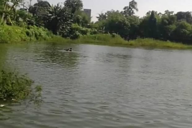 KNKT Belum Pastikan Pelaksanaan Evakuasi Heli Jatuh di Danau Buperta