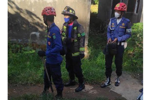 Petugas Evakuasi Biawak yang Kerap Muncul di Permukiman Warga