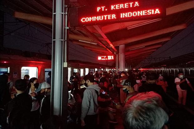 Pohon Tumbang, KRL Commuter Line Tujuan Bogor Hanya Sampai Depok