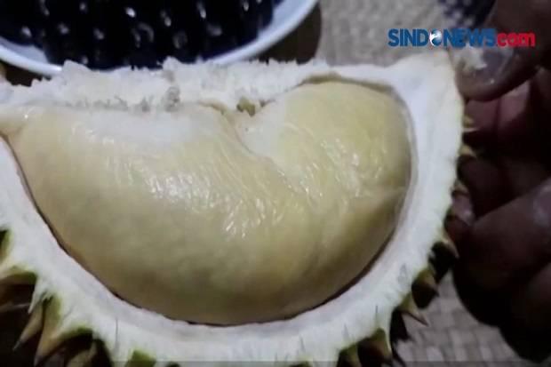 Puluhan Durian Montong Dibawa Kabur Maling, Pedagang Rugi Rp5 Juta