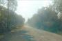 Pengguna Jalan Ruas Betung-Sekayu Keluhkan Kondisi Jalan yang Rusak dan Rawan Longsor