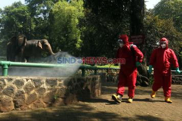 Jelang Dibuka Kembali, Taman Margasatwa Ragunan Disemprot Disinfektan