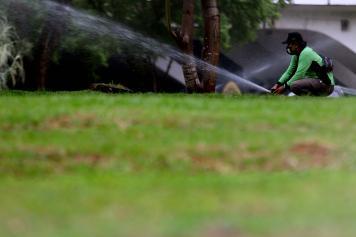 Perawatan Rutin Taman Kota di Kawasan Semanggi