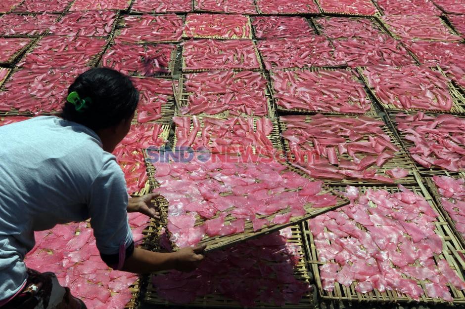 Produksi Kerupuk Merah Bogor Penuhi Pasar Jabodetabek-0