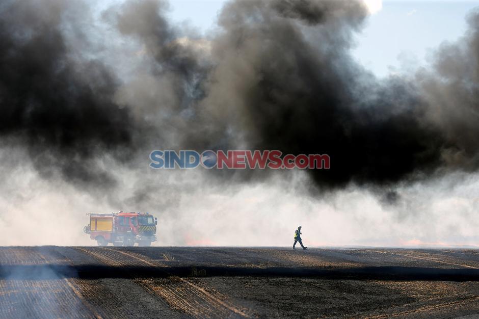 Musim Panas Berlanjut, Ladang Gandum di Prancis Terbakar-4