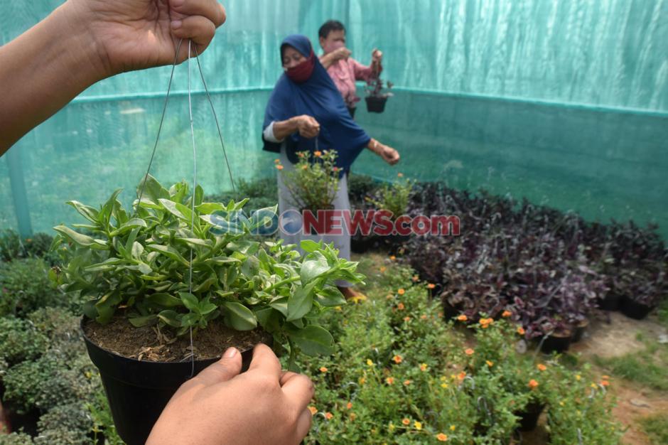 Warga Bambankerep Semarang Antusias Ikuti Pelatihan Urban Farming-1