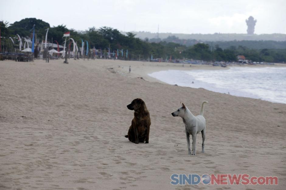 Begini Penampakan Pantai Jimbaran di Kala Sepi Akibat Pandemi-0