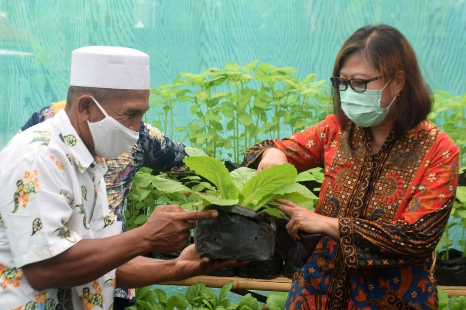 Warga Bambankerep Semarang Nikmati Panen Hasil Urban Farming-4