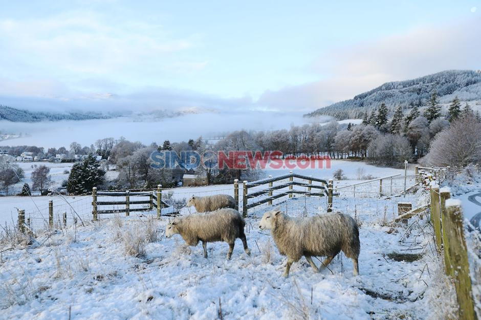 Cuaca Dingin Ekstrem Landa Inggris Selama Bulan Desember-4