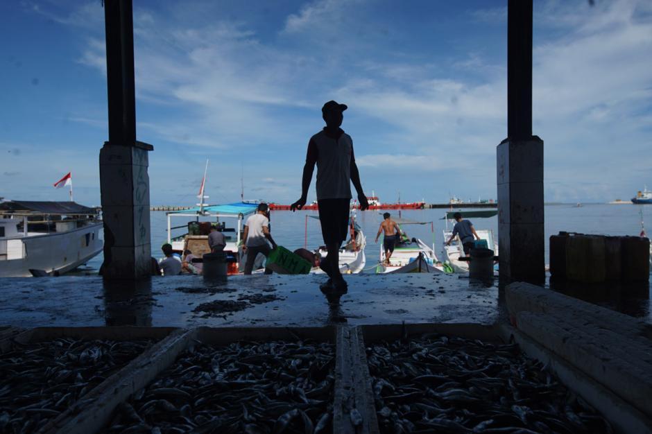 Gelombang Laut Tinggi, Harga Ikan di TPI Paotere Makassar Naik Dua Kali Lipat-2