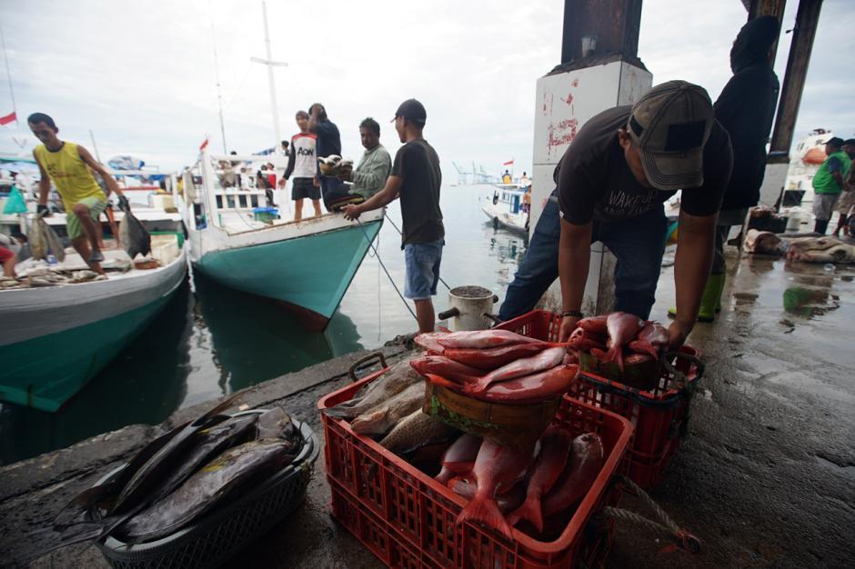 Gelombang Laut Tinggi, Harga Ikan di TPI Paotere Makassar Naik Dua Kali Lipat-0
