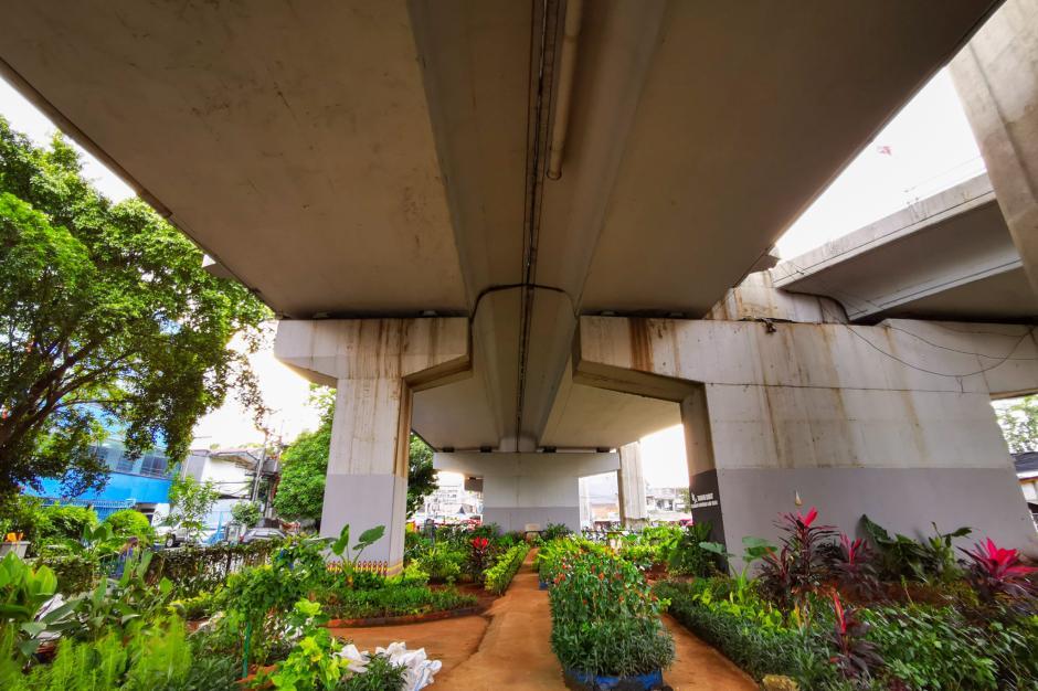 Budidaya Tanaman Hias di Bawah Kolong Jembatan Layang-0