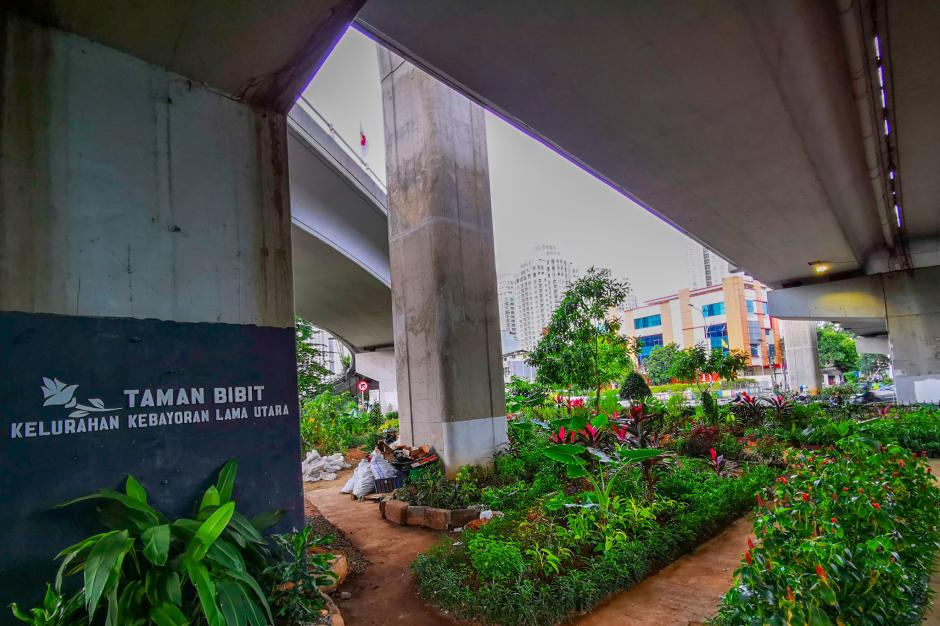 Budidaya Tanaman Hias di Bawah Kolong Jembatan Layang-5