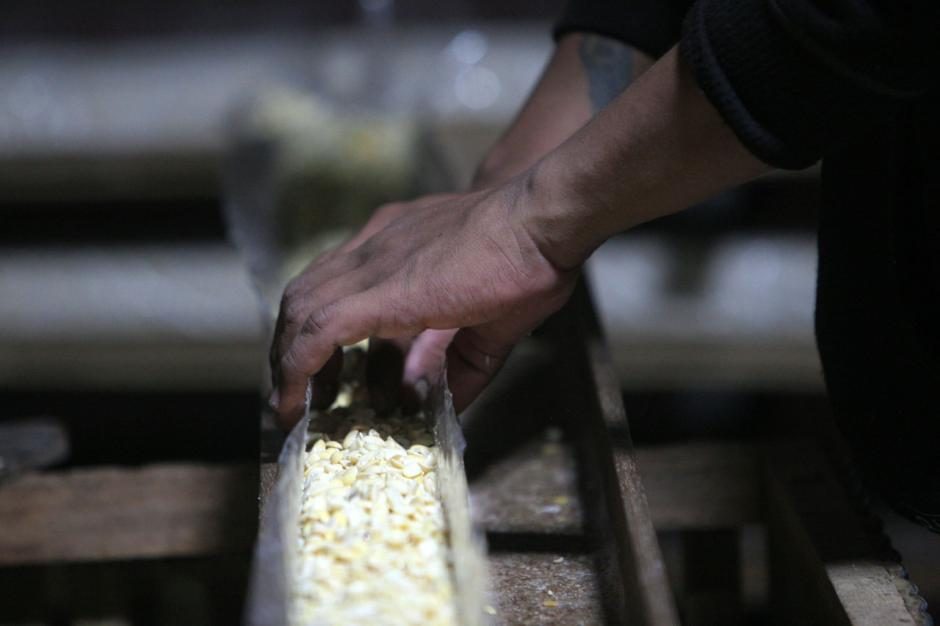 Penjualan dan Produksi Tempe Menurun, Perajin Keluhkan Harga Kedelai yang Masih Tinggi-0