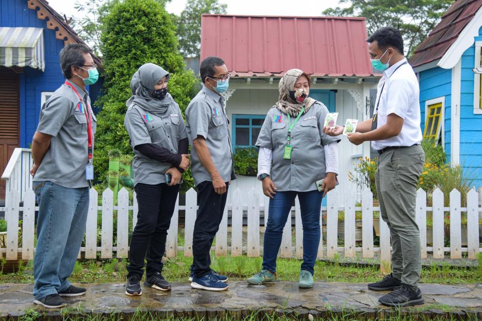 Sediakan Benih Sayuran Berkualitas, Ewindo Dukung Budidaya Hidroponik-2